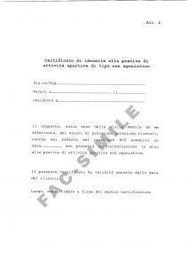 Ministero Salute - Linee guida att non agonistica del 08-08-14.p